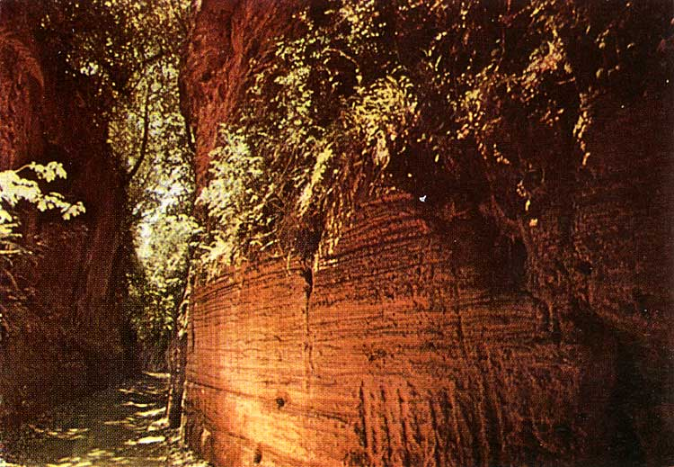 Etruscan road in Sovana . 6th century BCE.