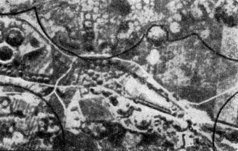 Aero-photo of necropolis in Caere. The middle part outlined with the line is explored. The white circles outside it are non-excavated tumuli. Cerveteri (Caere)