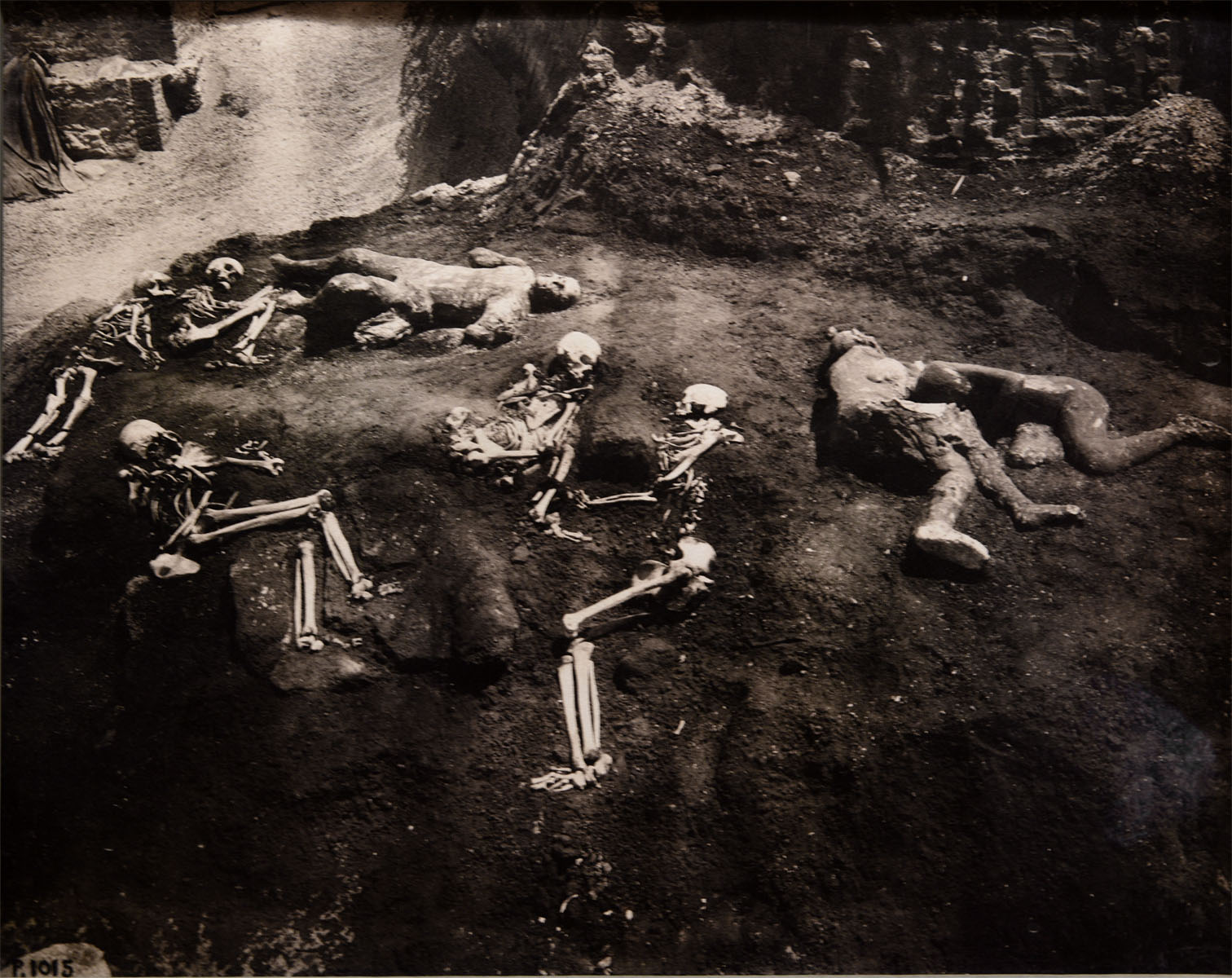 Skeletons and plaster casts of bodies of the victims of Vesuvius eruption of 79 CE. Photo made in 1915-16. Excavations of July 2-21, 1914. Pompeii