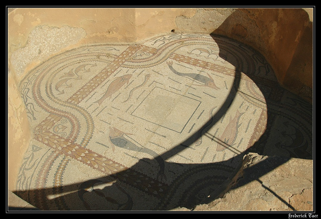 Mosaic floor in the pool of the Basilica of St. Vitalis. 6th century. Sufetula (modern Sbeitla, Tunisia)