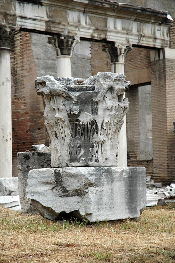 Portico of the Dei Consentes. The Corinthian capital. Rome, Roman Forum