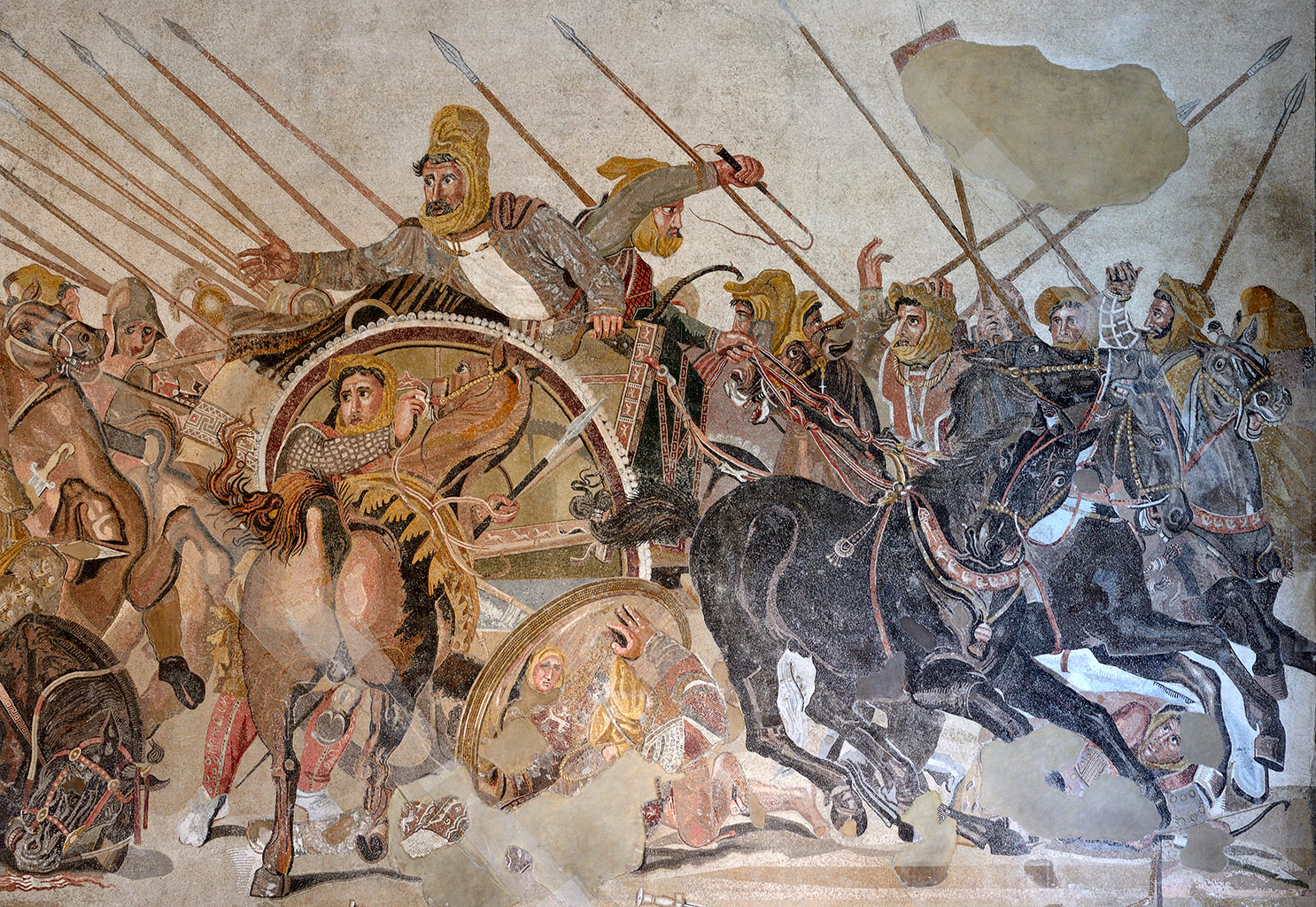 alexander the great and king darius
