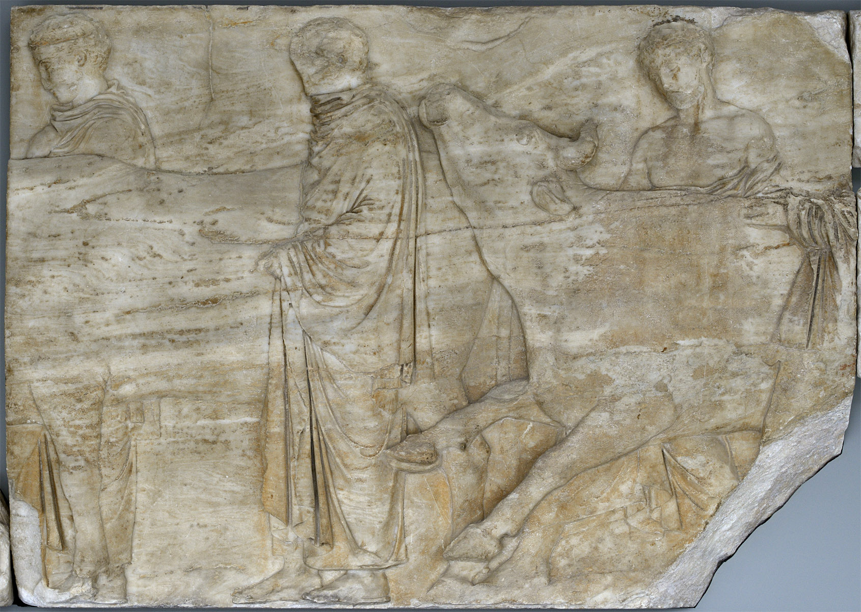 Panathenaic Procession. Men leading bulls. Frieze of Parthenon. The Northern face, block N II. Marble. 5th century BCE. Inv. No. Acr. 857. Athens, New Acropolis Museum