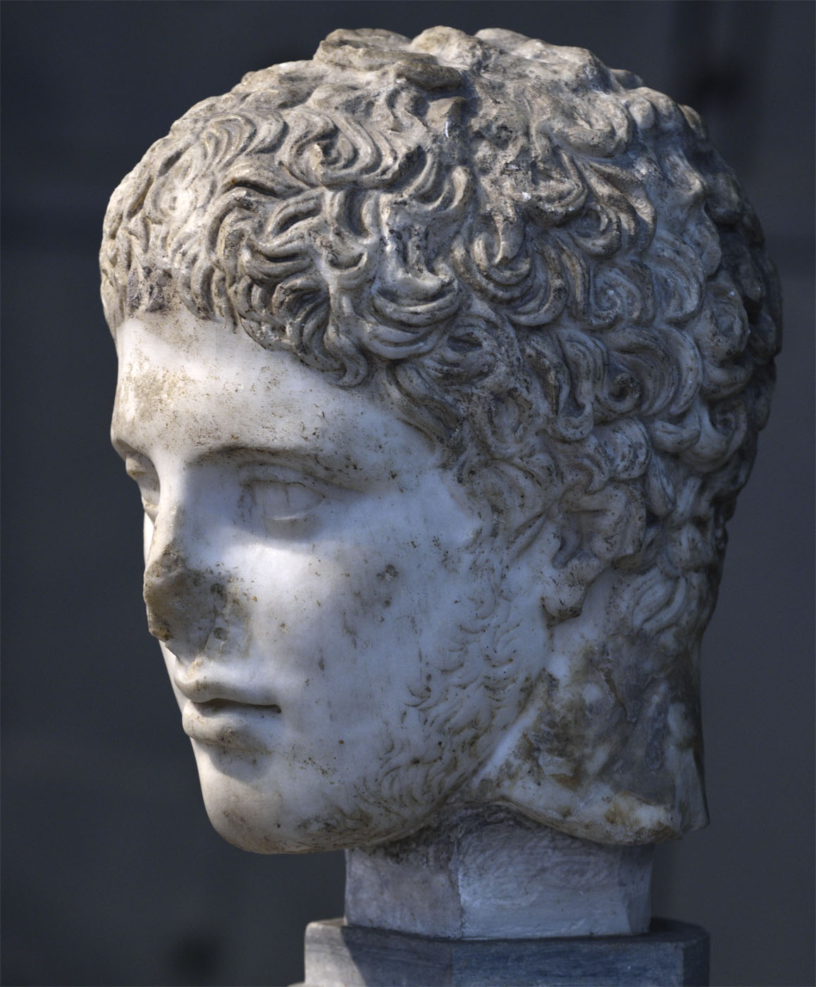 Head of Diomedes. Luni marble. Roman copy after a Greek statue of 420 BCE. Inv. No. 1867. Rome, Capitoline Museums, Museum Montemartini (Centrale Montemartini), II. 34