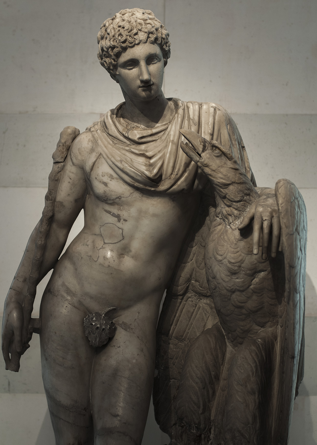 Ganymede and the Eagle. Marble. Roman copy of the 2nd cent. CE after a Greek original from the Praxiteles school, 3rd century BCE. Inv. No. A 950. Saint Petersburg, The State Hermitage Museum