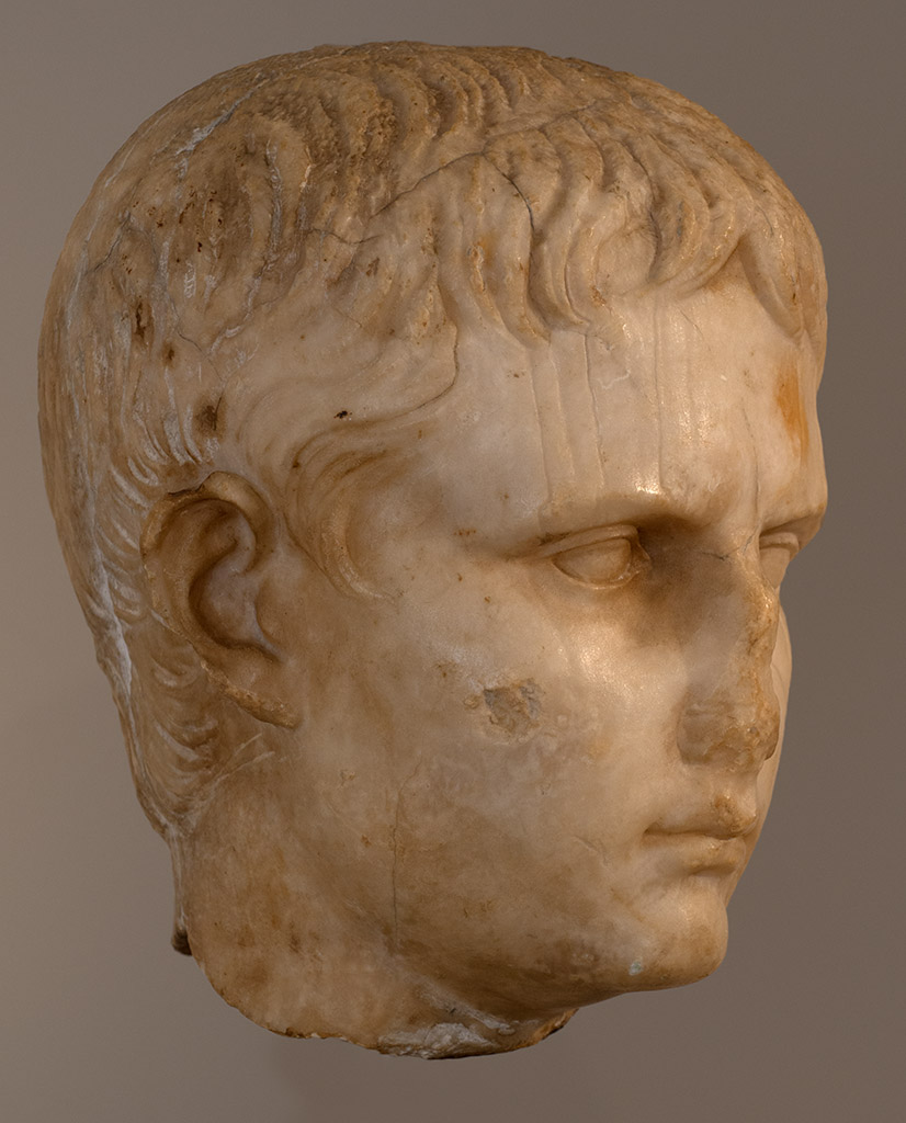 Portrait of a Julio-Claudian youth, possibly Gaius Caesar. Marble. Ca. 5 BCE or later. Inv. No. 2011.376. New York, the Metropolitan Museum of Art