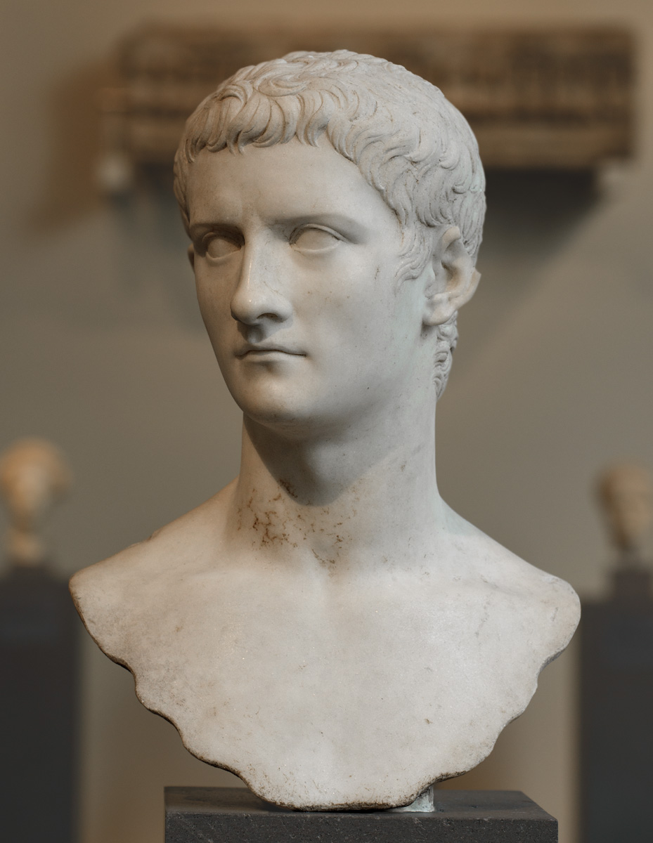 an analysis of the madness of a goat and the role of caligula in rome The praetorian guards: to serve and the madness of caligula in one version of the tale of claudius' rise as the emperor of rome the praetorian guard.