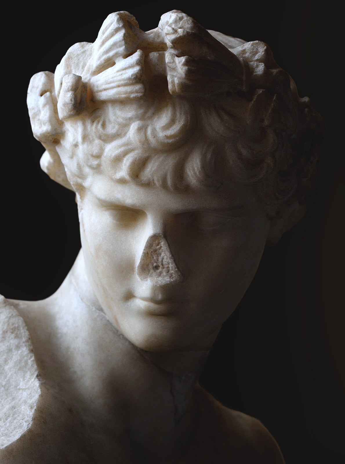Antinous as Dionysus (close-up). Pentelic marble. Inv. No. MC 897. Rome, Capitoline Museums, Museum Montemartini (Centrale Montemartini), II. 78