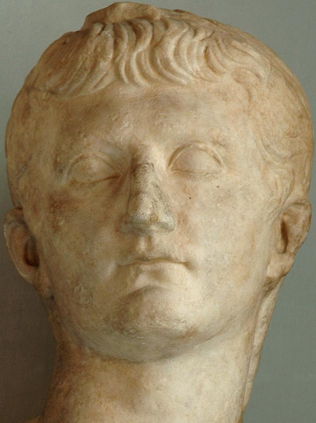 Head of Germanicus. Detail. Marble. 15—19 CE. Height 44 cm. Inv. No. MC415. Rome, Capitoline Museums, Palazzo Nuovo, Hall of the Emperors