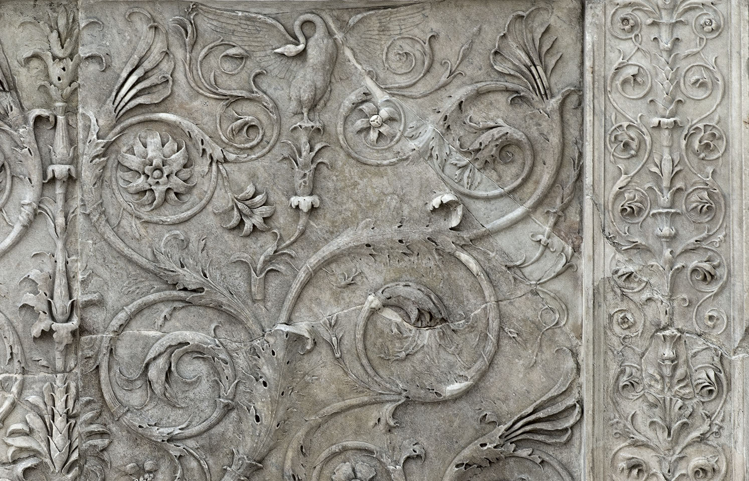 Decorative floral panel (close-up). Left part of the east facade of the Ara Pacis Augustae (lower panel). Rome, Museum of the Altar of Augustan Peace (Ara Pacis Augustae)