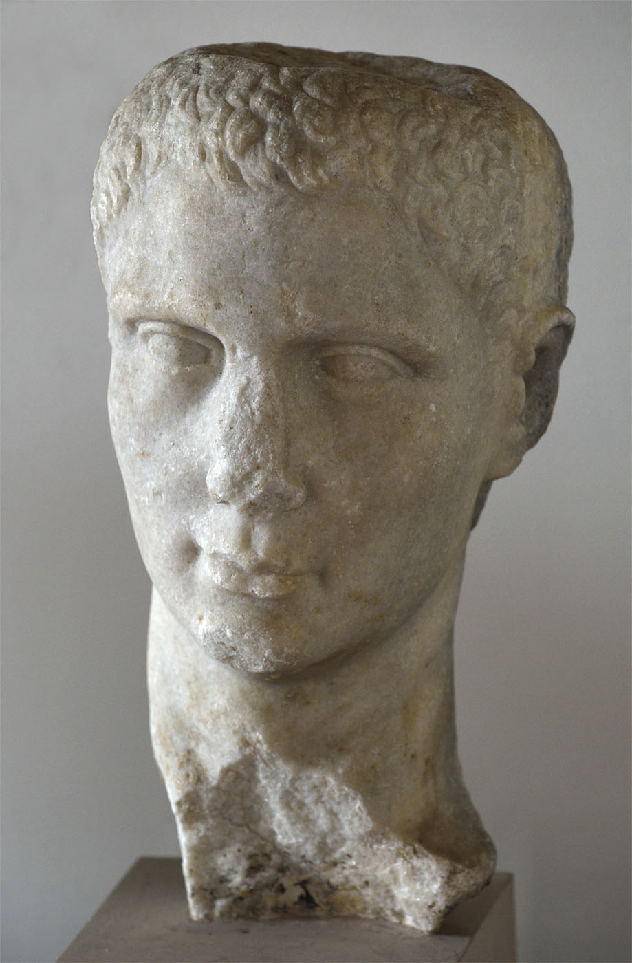 Portrait head of a man. Marble. 1st century BCE. Capua, The Provincial Museum of Campania