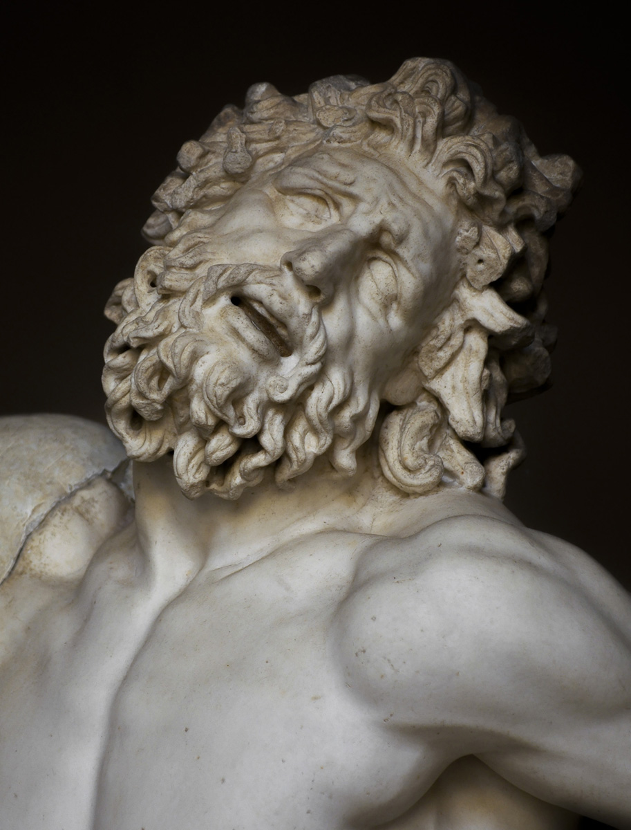The Laocoon group. Detail: the head of Laocoon. Marble. 1st century CE. Inv. No. 1059. Rome, Vatican Museums, Pius-Clementine Museum, Octagonal Court, Laocoon Cabinet, 2