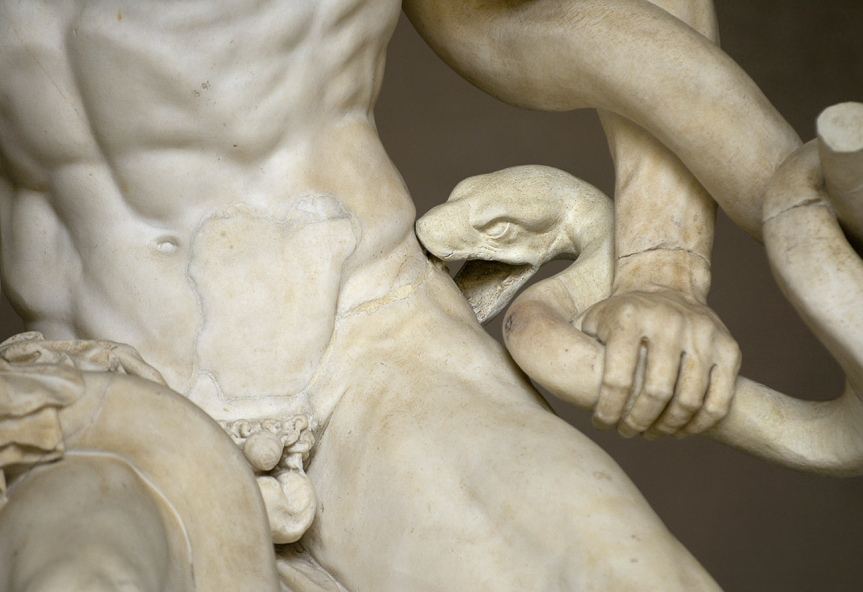 The Laocoon group. Detail: the serpent's head. Marble. 1st century CE. Inv. No. 1059. Rome, Vatican Museums, Pius-Clementine Museum, Octagonal Court, Laocoon Cabinet, 2