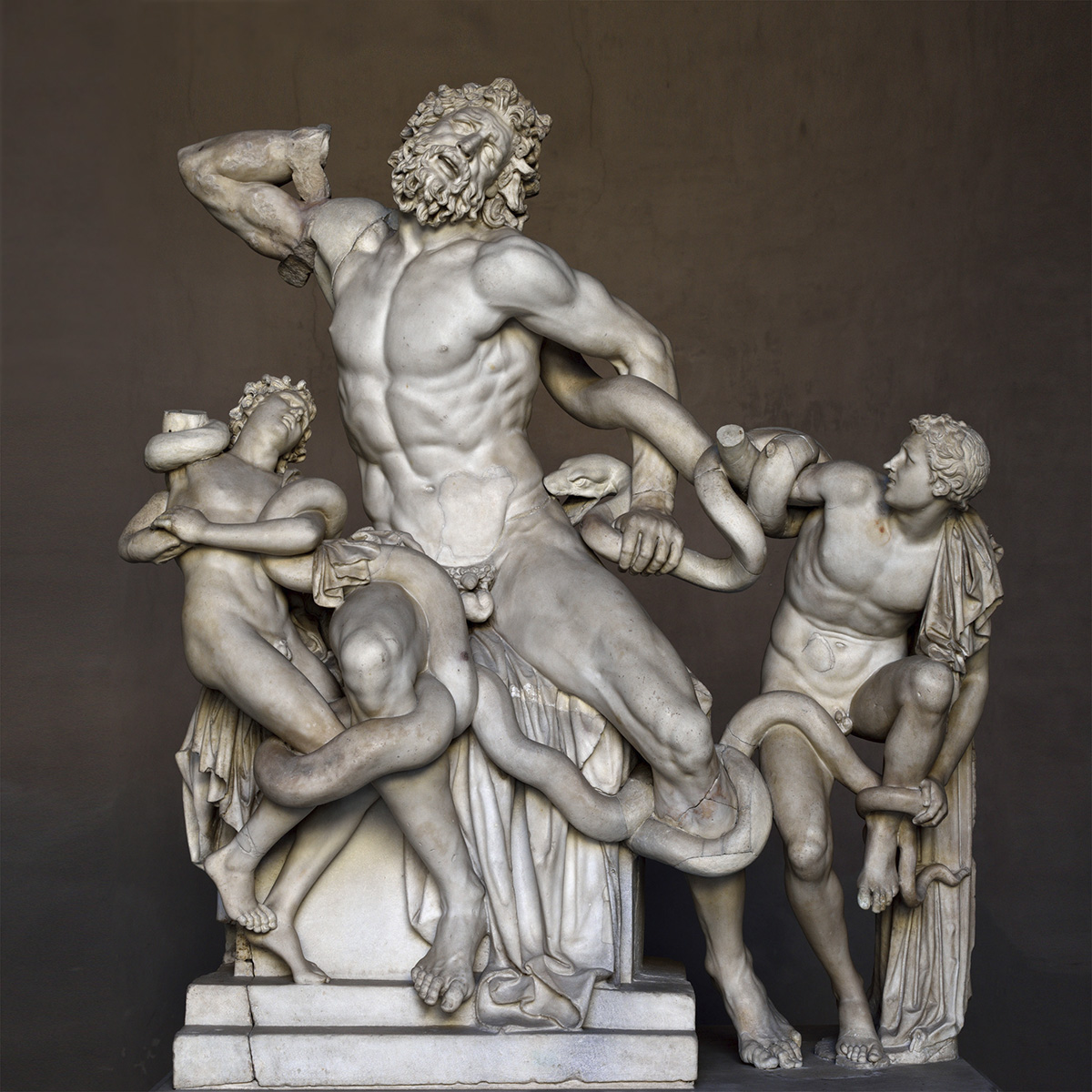 Laocoon. Marble. 1st century CE. Inv. No. 1059. Rome, Vatican Museums, Pius-Clementine Museum, Octagonal Court, Laocoon Cabinet, 2