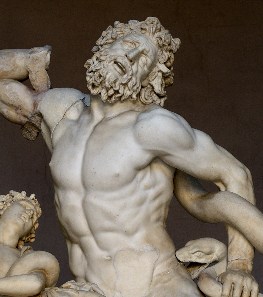 Laocoon (close-up). Marble. 1st century CE. Inv. No. 1059. Rome, Vatican Museums, Pius-Clementine Museum, Octagonal Court, Laocoon Cabinet, 2