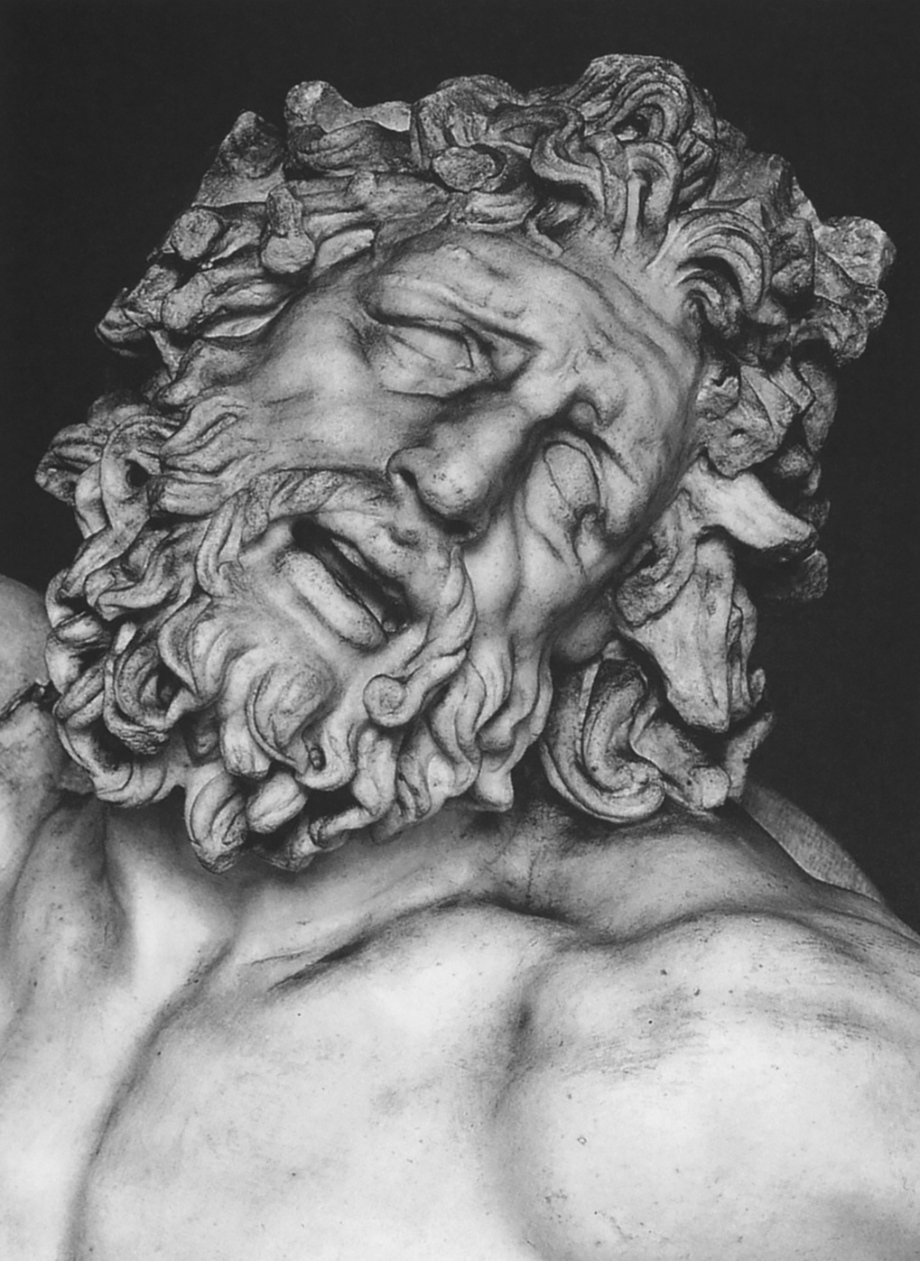 The Laocoon group. Detail: the head of Laocoon. Marble. 1st century BCE. Inv. No. 1059. Rome, Vatican Museums, Pius-Clementine Museum, Octagonal Court, Laocoon Cabinet, 2